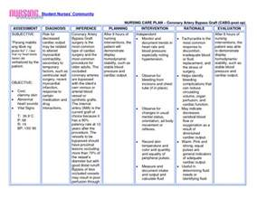 sample care plan for skin integrity picture 5