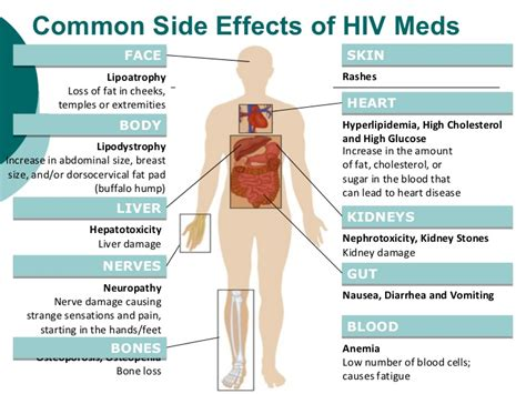 meds that damage the liver picture 2