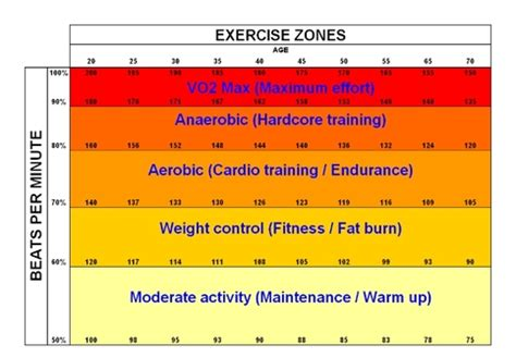 fat burning zone picture 3