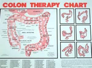 colon chart picture 1
