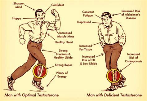 testosterone vs free testosterone level picture 5