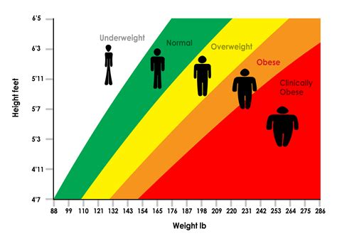 weight loss graphs picture 6