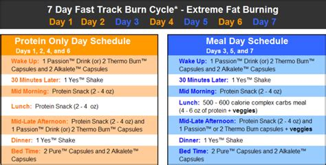ebay the seven day fast track diet picture 5