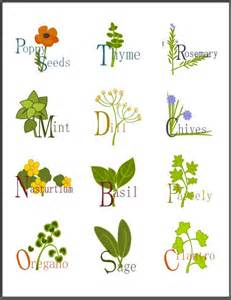 printable herbal clipart picture 1