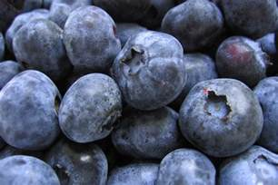 blueberry big breast inflation picture 5