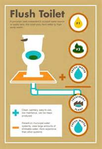 how to flush toilet vent with bladder picture 5