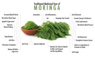 antiaging herbal picture 2