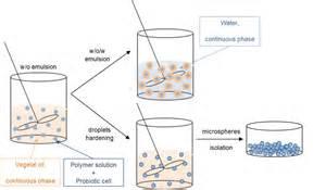 encapsulation of probiotic picture 1