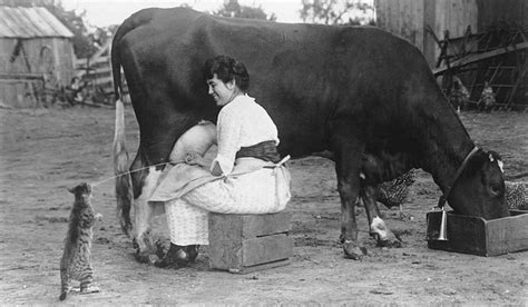 women milking s picture 10