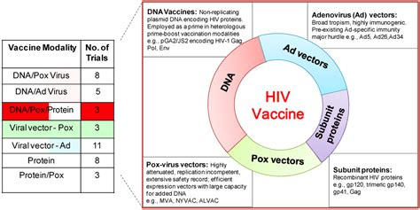 new herpes vaccine 2014 picture 3