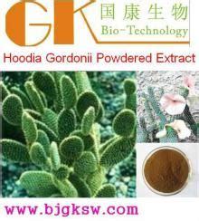 hoodia gordonii extract picture 10