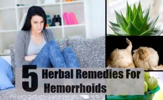 herbal medicine hemorrhoids picture 3