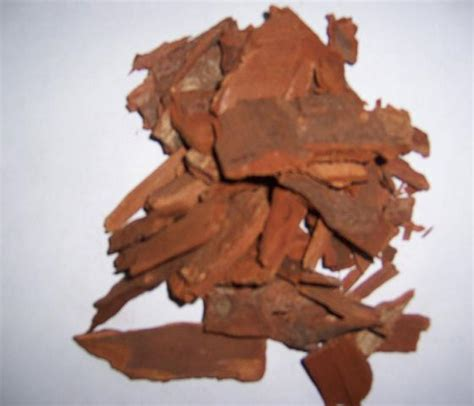 yohimbee bark and prostate health picture 9