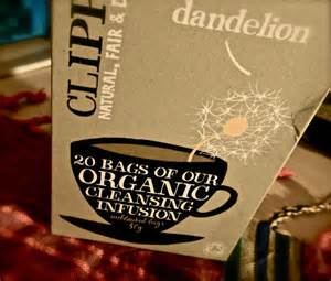 dandelion cleanse weight loss picture 10