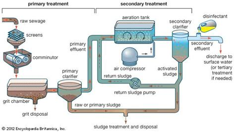 dictionary anaerobic digestion picture 13