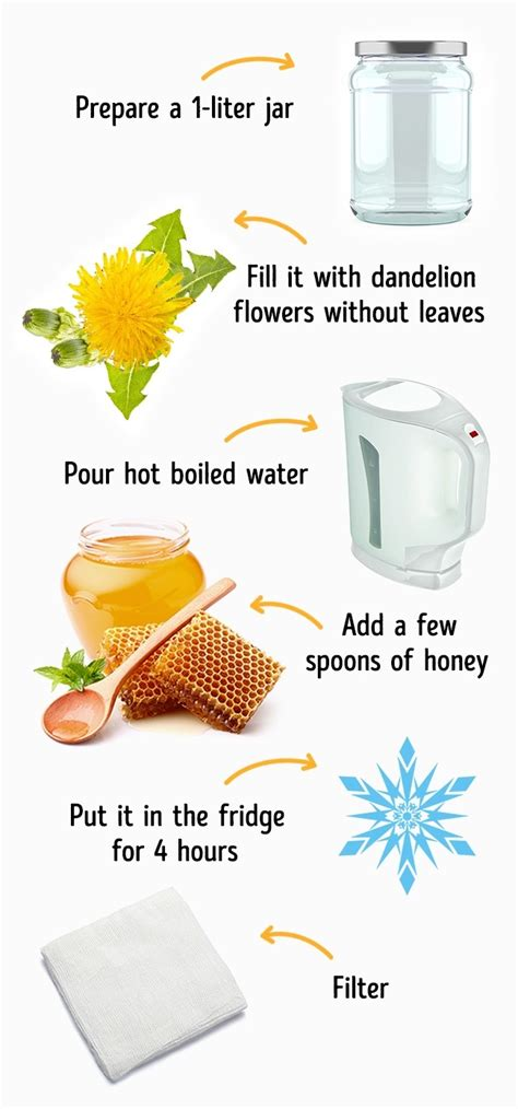 dandelion for fat digestion picture 10