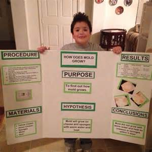 science fair projects yeast picture 6