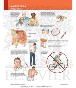 Bacteria rid of prostate picture 13