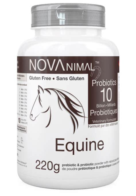 equine probiotics canada picture 2