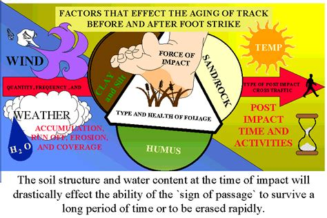 what is natural aging in metals picture 7
