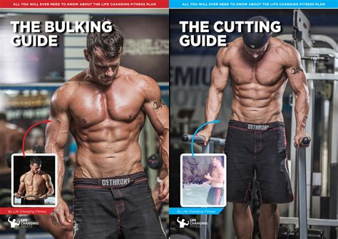 bulk muscle diet and workout picture 3