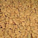 fenugreek trigonella foenum grae to lower cholesterol picture 9