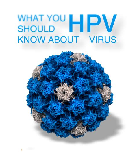 human papilloma virus purchase picture 10
