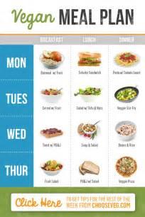 vegan diet picture 6