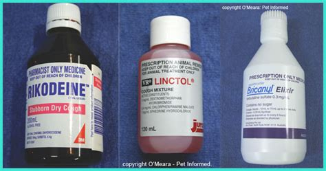 cough suppressors for dogs picture 15
