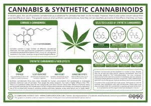 what herbs mimic the chemicals in cannabis picture 4