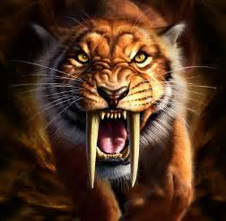 saber tooth tiger picture 14