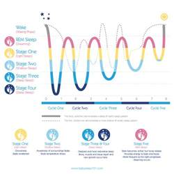 infant sleep cycles picture 5