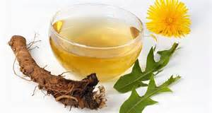 allergic to dandelion root tea picture 13