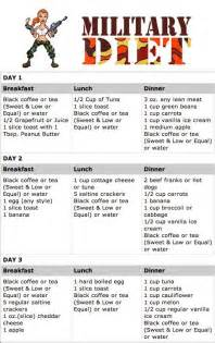 best weight loss diet plan picture 10