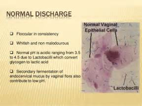 watery brown discharge post menopause picture 3