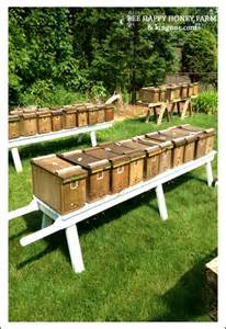 honey bees for sale in alabama picture 15