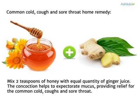 Ayurveda+To reduce mucus picture 1