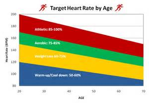 weight loss heart rates picture 7