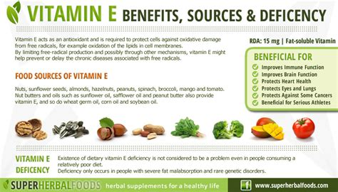 benefits of rogin e vitamins picture 5