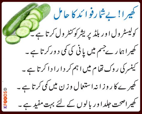 cholesterol save in urdu picture 9