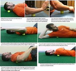 how much can the bladder stretch picture 6