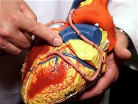 Kid cholesterol my heart picture 5