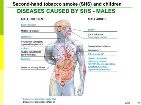 second hand smoke diseases picture 6