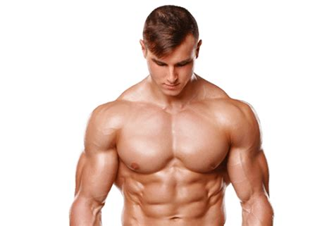 free muscle picture 6