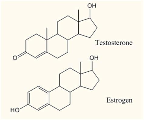 testosterone and estrogen pills picture 6