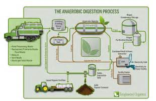 anaerobic digestion system picture 3