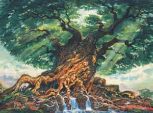 where to buy the life tree purify picture 10