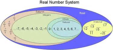 gordonii what is amount in system picture 11