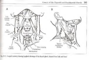 thyroid enlarged thyroid lymph picture 9