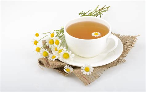 can biguerlai tea cause miscarriage early pregnancy picture 9